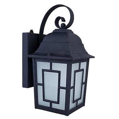 Whitfield Lighting Kana 1-Light Outdoor Wall Lantern