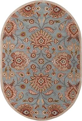 Surya Caesar CAE1052-69OV Hand Tufted Rug, 6' x 9' Oval