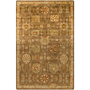 Surya Ainsley AIN1016-913 Hand Knotted Rug, 9' x 13' Rectangle