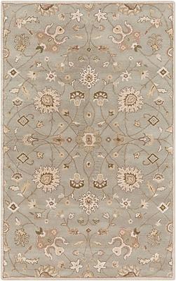Surya Caesar CAE1121-811 Hand Tufted Rug, 8' x 11' Rectangle