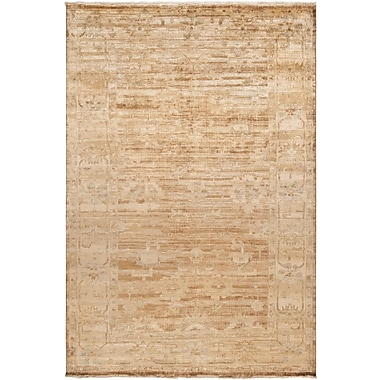 Surya Hillcrest HIL9012-5686 Hand Knotted Rug, 5'6