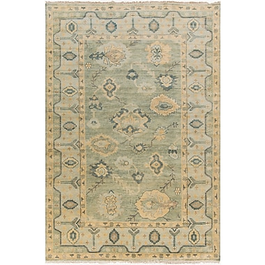 Surya Hillcrest HIL9017 Hand Knotted Rug