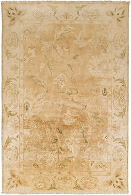 Surya Hillcrest HIL9030-811 Hand Knotted Rug, 8' x 11' Rectangle