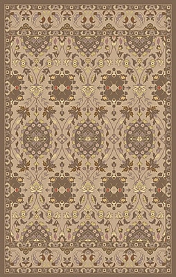 Surya Mykonos MYK5019-23 Hand Tufted Rug, 2' x 3' Rectangle