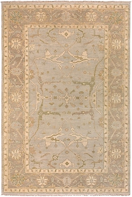 Surya Ainsley AIN1000-23 Hand Knotted Rug, 2' x 3' Rectangle