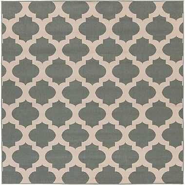 Surya Alfresco ALF9585-89SQ Machine Made Rug, 8'9