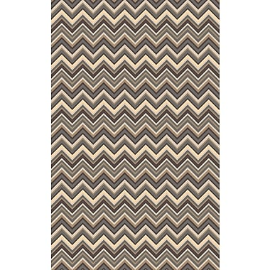 Surya Centennial CNT1110-811 Hand Hooked Rug, 8' x 11' Rectangle