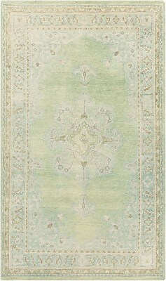 Surya Haven HVN1222-913 Hand Knotted Rug, 9' x 13' Rectangle