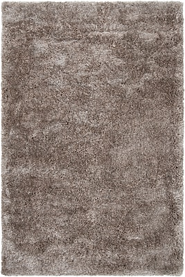 Surya Grizzly GRIZZLY6-58 Hand Woven Rug, 5' x 8' Rectangle