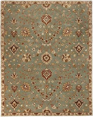 Surya Kensington KEN1042-23 Hand Tufted Rug, 2' x 3' Rectangle