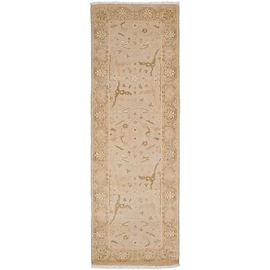 Surya Ainsley AIN1000-268 Hand Knotted Rug, 2'6