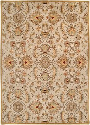 Surya Caesar CAE1029-811 Hand Tufted Rug, 8' x 11' Rectangle