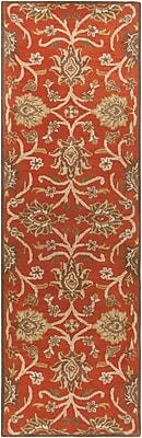 Surya Caesar CAE1062-268 Hand Tufted Rug, 2'6