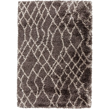 Surya Rhapsody RHA1017-23 Hand Woven Rug, 2' x 3' Rectangle