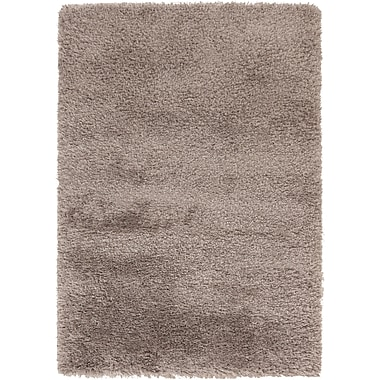 Surya Rhapsody RHA1033-58 Hand Woven Rug, 5' x 8' Rectangle