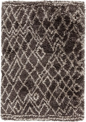 Surya Rhapsody RHA1011-912 Hand Woven Rug, 9' x 12' Rectangle