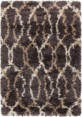 Surya Rhapsody RHA1030-23 Hand Woven Rug, 2' x 3' Rectangle