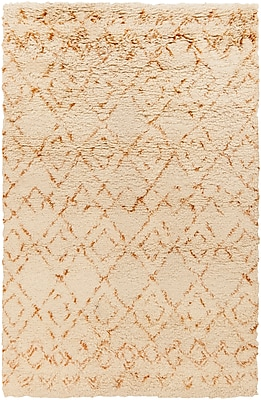 Surya Tasman TAS4504-23 Hand Woven Rug, 2' x 3' Rectangle