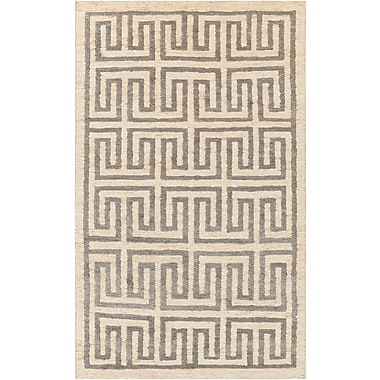 Surya Columbia CBA116-23 Hand Woven Rug, 2' x 3' Rectangle