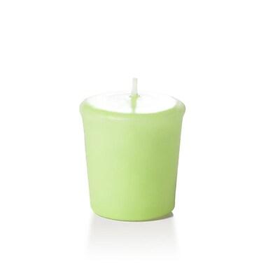 Yummi – Bougies votives inodores, menthe, 15 heures, 144 bougies par boîte