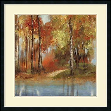 Amanti Art Indian Summer II Framed Art Print by Allison Pearce, 32