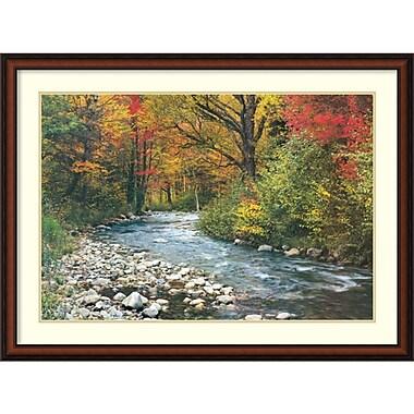 Amanti Art Forest Creek Framed Art Print, 32