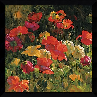 Amanti Art Iceland Poppies Framed Art Print by Leon Roulette, 32.38