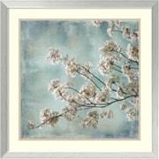 "Amanti Art ""Aqua Blossoms I"" Framed Art Print by John Seba, 25.88""H x 25.88""W"