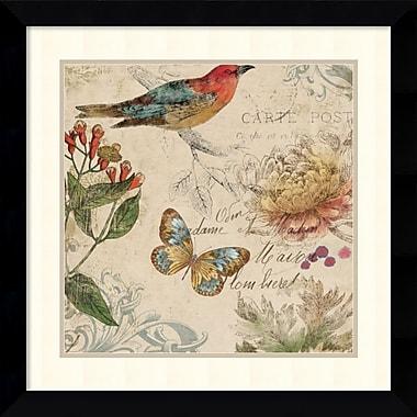 Amanti Art Natures Rhapsody II Framed Art Print by Aimee Wilson, 25.63
