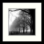 "Amanti Art ""Black and White Morning"" Framed Art Print by Harold Silverman, 13""H x 13""W"