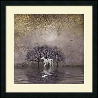 Amanti Art White Horse in Pon Framed Art Print by Dawne Polis, 22