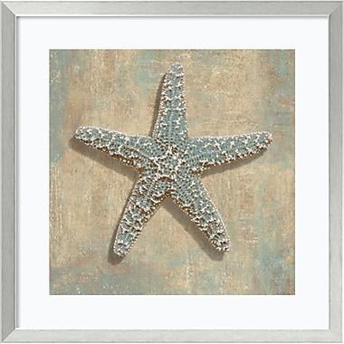 Amanti Art Aqua Starfish Framed Art Print by Caroline Kelly, 26.88