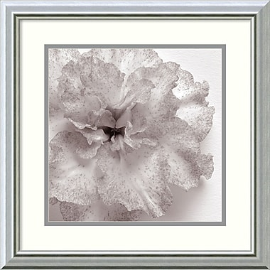 Amanti Art Blossom One Framed Art Print by JK Driggs, 18