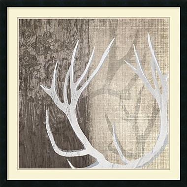 Amanti Art Deer Lodge I Framed Art Print by Tandi Venter, 34