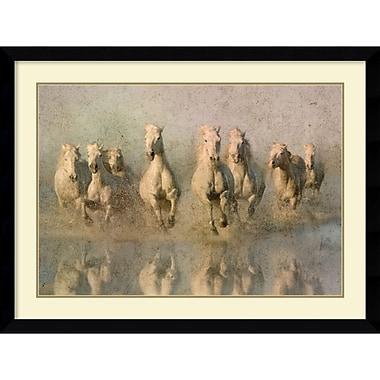Amanti Art Run Free Framed Art Print by Phyllis Bruchett, 32.13