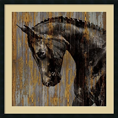 Amanti Art Horse I Framed Art Print by Martin Rose, 34