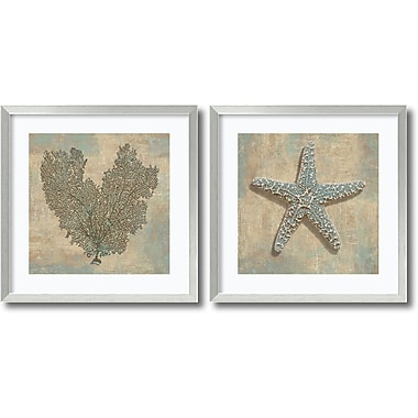 Amanti Art Aqua Fan Coral & Starfish Framed Art Print by Caroline Kelly, 26.88