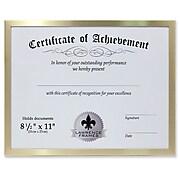 "Lawrence Frames 240281 Gold Aluminum 11.25"" x 8.75"" Document Frame"
