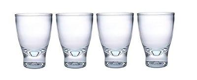 Chenco Inc. 10 oz. Acrylic Tumbler Glass (Set of 4)