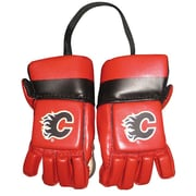 NHL Kloz Inc. Mini Gloves