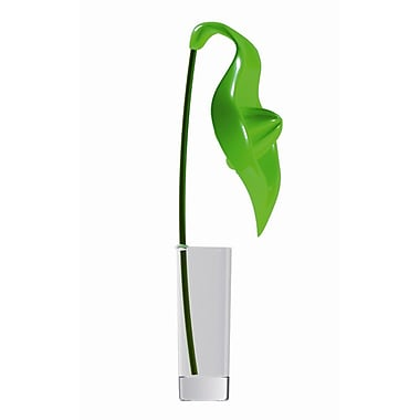 Legnoart® Spicy Anthurium Juicer with Glass, Green