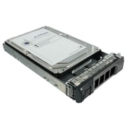 """AXiom® 300 3.5"""" 3Gb/s 10K HDD for Dell R310"""