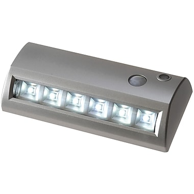 Fulcrum Light-It 6-LED Wireless Motion Activated Path Light, Silver (FCM20032301D)