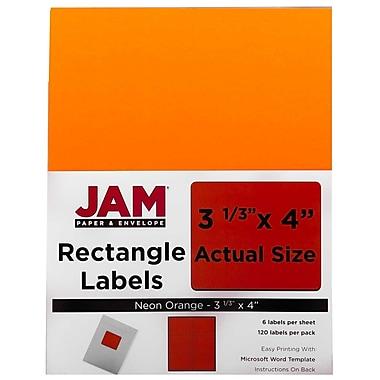JAM PaperMD– Étiquettes postales de couleur néon fluorescent, 3 1/3 x 4 po, 360/paquet