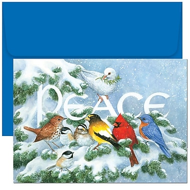 JAM Paper® Christmas Holiday Cards Set, Home for the Holidays Birds on Branch, 2 packs of 18 (526796600g)