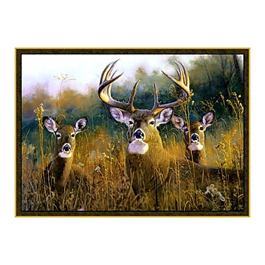 Custom Printed Rugs Wildlife Buck Stops Here Brown Novelty Oudoor Area Rug; 3'1'' x 4'4''