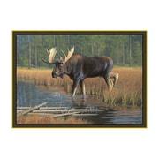 Custom Printed Rugs Wildlife Moose Novelty Area Rug; 3'1'' x 4'4''