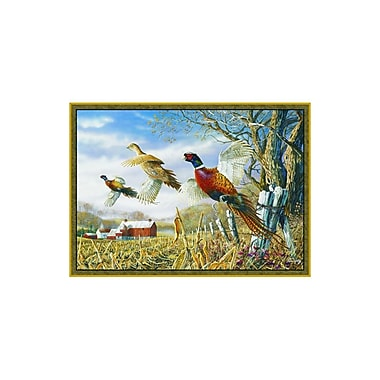 Custom Printed Rugs Wildlife Pheasants Novelty Outdoor Area Rug; 3'1'' x 4'4''