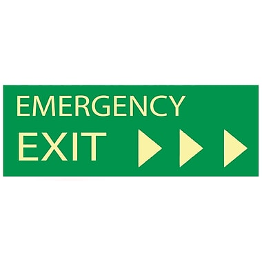Emergency Exit with Right Arrow, 5