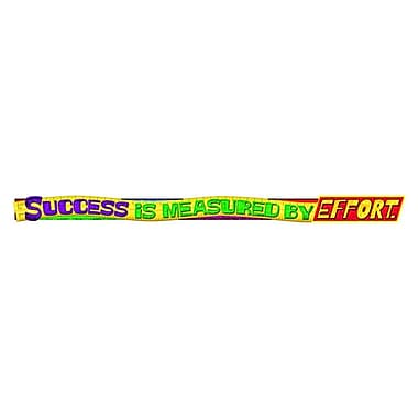 TREND TA-25219 10' Straight Success Is Measured By Effort Banner, Multicolor